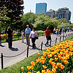 HomePg_PlanYourVisit_Parks&GreenSpacesTN_01