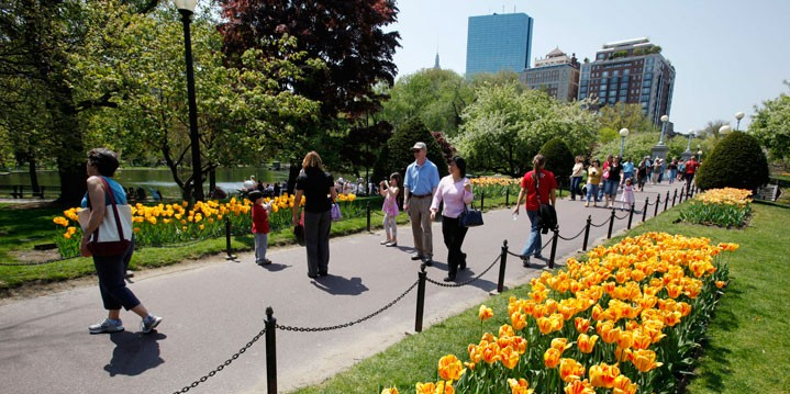 Image result for boston green spaces