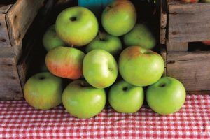Pop-Up Apple Orchard at Artisan Bistro @ Artisan Bistro at The Ritz-Carlton Boston   Boston   Massachusetts   United States
