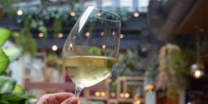Terra Wine Dinner: Behind Natural & Biodynamic Wines @ Terra at Eataly Boston | Boston | Massachusetts | United States